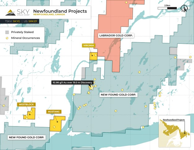 Claims map of Sky Gold's Newfoundland properties